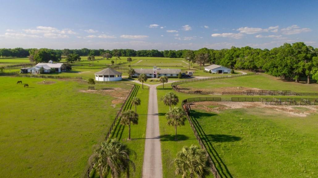 Property Spotlight: Star Runner Farm